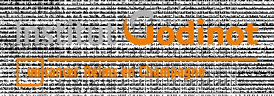 Logo Institut Godinot